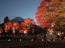 秋には紅葉祭りで