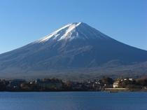 【四季の富士】春の河口湖と富士山