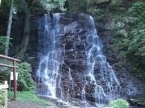 【観光スポット】マイナスイオンの母の白滝