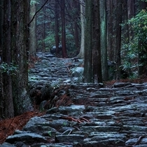 △熊野古道を歩くこと-修行であり、自分を見つめること-