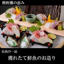 ●熊野灘の恵み 獲れたて鮮魚のお造り