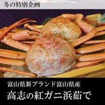 ●高志紅カニ浜茹で