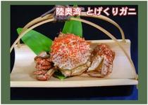 季節のお料理(陸奥湾 とげくりガニ)