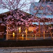 外観(桜)夕景