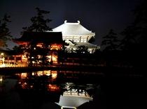 【ナイトツアー】鏡池に映る東大寺大仏殿