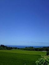 小島地区の風景