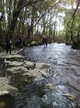 一枚岩の川
