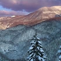 *【展望】美しい雪化粧に彩られた山の風景をお楽しみ頂けます。