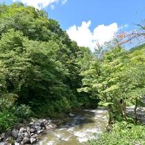 *施設の隣を流れる青荷川