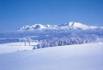 雪原と旭岳