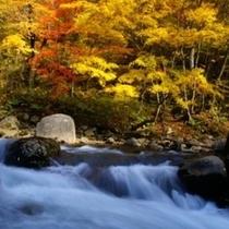 【秋*紅葉】片品渓谷