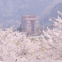 【外観】春