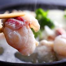 【淡路島3年とらふぐのてっちり】ぷりっぷりの食感がたまらない。