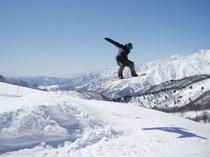 白馬アルペンリゾート栂池高原スキー場「栂の森ゲレンデで舞う」(3:2)