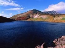 中部山岳国立公園「白馬大池」