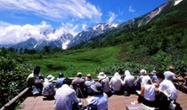 中部山岳国立公園「栂池自然園」