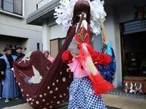 毎年1月5日に行われる、相差の獅子舞