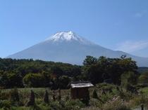 忍野からの富士