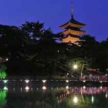 古都奈良の夜に光の祭典・・・なら燈花会
