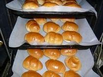 ふっくらもちもちの焼きたてのパンです。