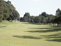 11ホール(PAR5/Back Tee:476Y・Regular Tee:465Y) / フェアウェ