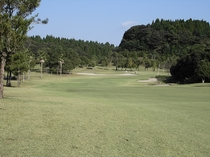 15ホール(PAR4/Back Tee:505Y・Regular Tee:482Y) / やや左ドッ