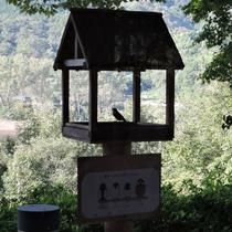 *施設一例:鳥小屋