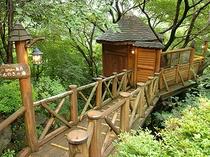 木の上の露天風呂