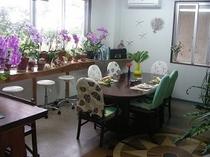 カフェ・食堂