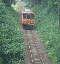 津軽鉄道と新緑
