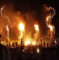 虫と火祭り