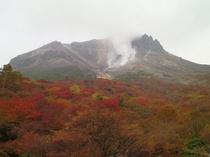 紅葉姥ヶ平より茶臼岳を望む