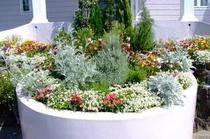 玄関前の花壇