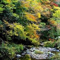 耶馬渓(やばけい)の風景