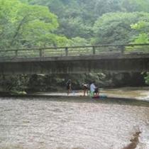 2014夏画像