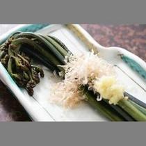 *【山菜のおひたし】豊かな自然の中で採れた山菜をさっぱりと。