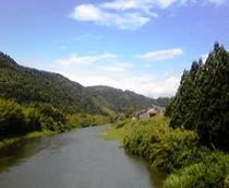 名張川水系 葛生