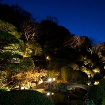 ライトアップされた夜の庭園(夜庭園P01)