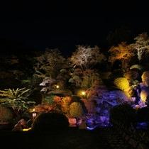 毎晩催される庭園を彩る光のリュージョン。