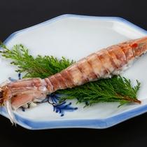 【単品料理】シャコ(蝦蛄)