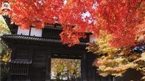 弘前公園 弘前市