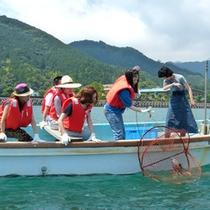 【上ノ加江】カニかご漁体験付き宿泊パックプラン3