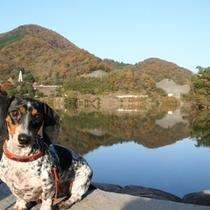 澄み切った空気と水の松川湖。
