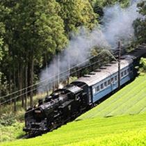 *大井川鉄道