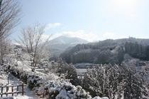 雪の降った朝の様子