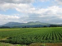 阿蘇山が見える風景(車で30分)