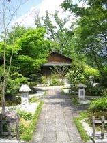 新緑の庭園アプローチ