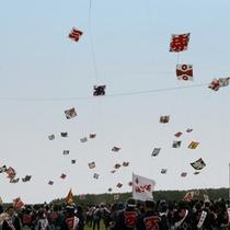 浜松まつりの目玉の一つ大凧揚げ(浜松観光コンベンションビューロー提供)