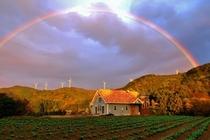 みなみ風に架かる虹