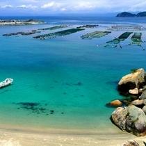 高知県 柏島